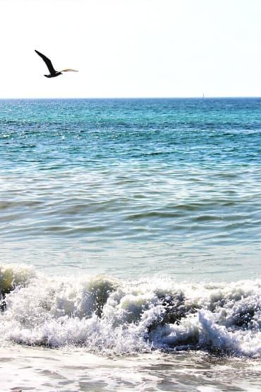 Las mejores Playas Marbella